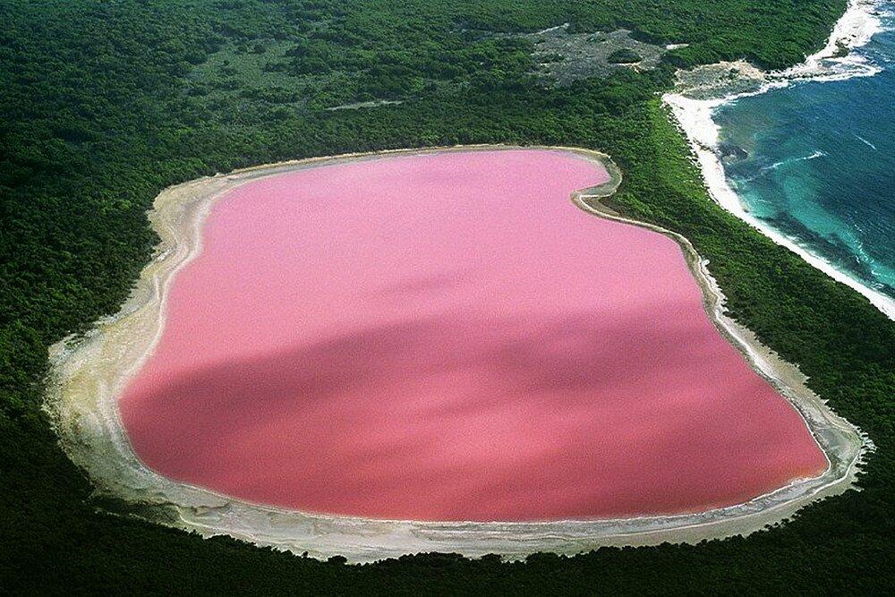 Австралийское розовое озеро Хиллиер