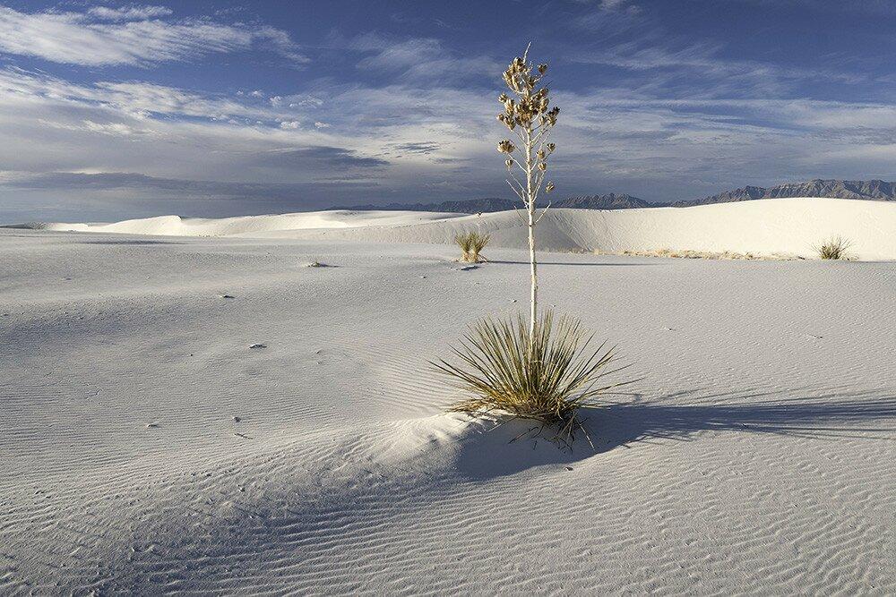 Национальный памятник «Белые пески» (Нью-Мексико, США)